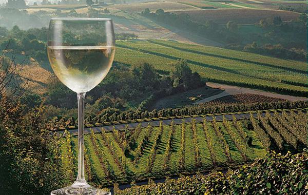 Retusche Weinglas in Landschaft setzen